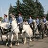 В Абакане на охрану правопорядка заступает конная полиция