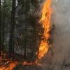 В Хакасии потушен лесной пожар