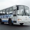 В Красноярске задержан мужчина, стрелявший по маршрутному автобусу