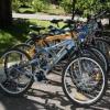 В Красноярском крае стали пользоваться популярностью велосипеды