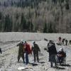 В Хакасии добровольцы садят леса