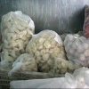 В Хакасии арестовали около одной тонны мясных полуфабрикатов