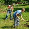 В Хакасии открылся сезон трудовых отрядов