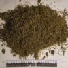 Сотрудники ачинской полиции в поезде задержали наркомана