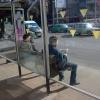Красноярская Администрация проведет аукцион на предмет размещения рекламы на остановках