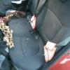 В Красноярске нетрезвая мать стала виновницей ДТП с тремя автомобилями