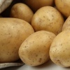 В Абакане состоится праздник молодой картошки