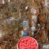 Бодибилдер из Хакасии предстанет перед судом за контрабанду анаболических стероидов