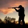 Жителя Хакасии привлекут за незаконную охоту