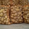 В Хакасии отбирают картошку под прицелом ружья