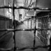 В Хакасии осудят вора сразу по пяти эпизодам