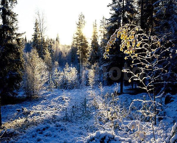 Снег сдождем ждет нижегородцев ввыходные