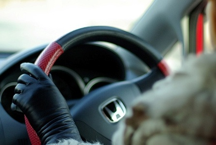 ВКрасноярском крае женщина без водительских прав сбила трёх школьниц