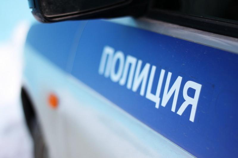 Полицейские задержали вСосновоборске подозреваемых вубийстве красноярца