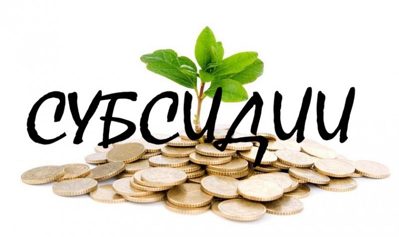 ВКанске бизнесвумен нелегально заработала намолоке практически 2 млн руб.