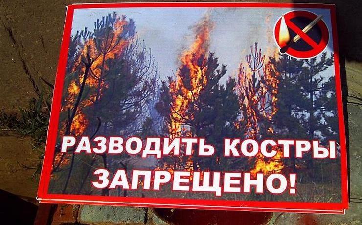 ВКрасноярском крае вводится особый противопожарный режим
