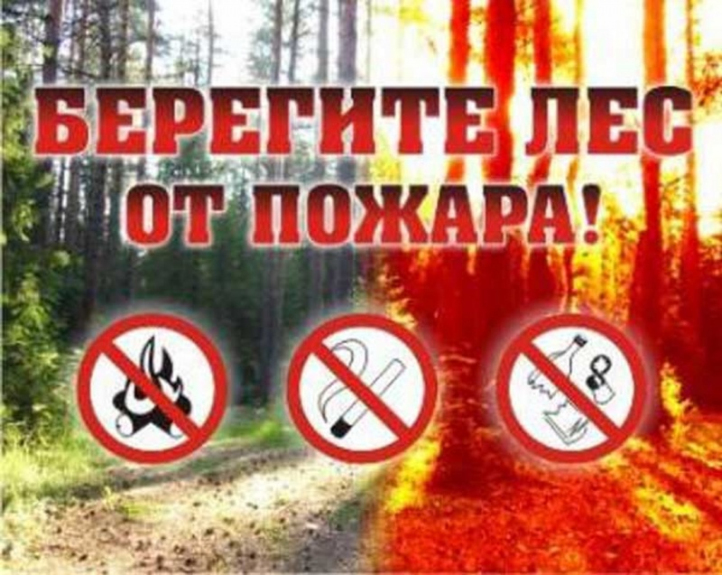 http://zapad24.ru/uploads/posts/2017-04/1492744522_44229372.jpg