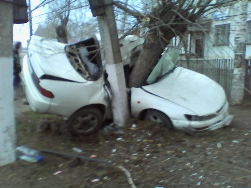 ВКрасноярском крае шофёр иномарки умер отстолкновения сдеревом