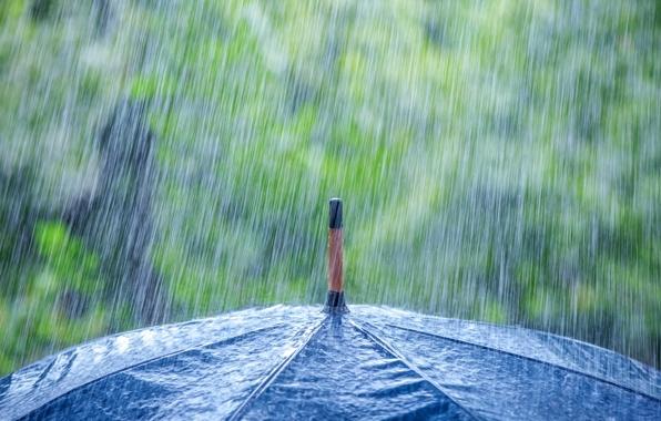 Штормовое предупреждение: ВКрасноярский край идут дождь, грозы иград