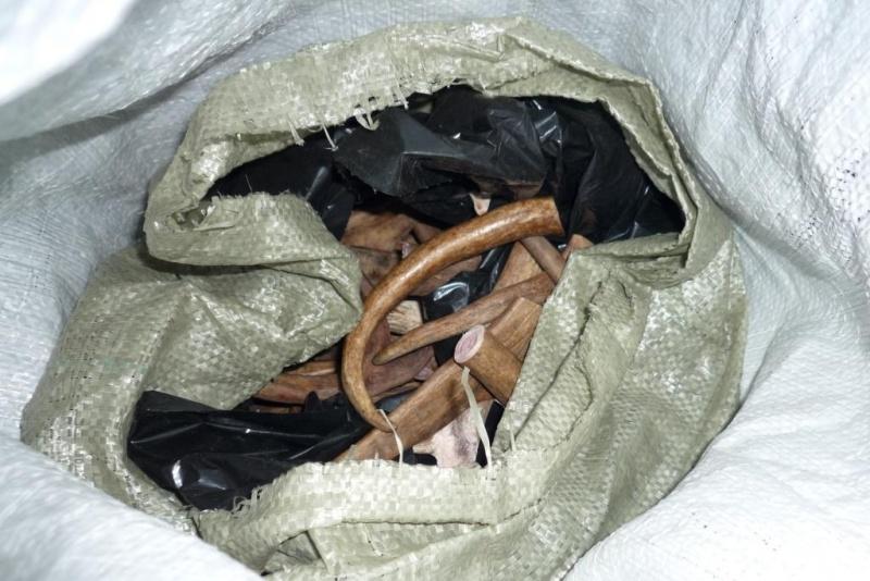 ВНорильске мужчину осудят закражу 145кг оленьих рогов