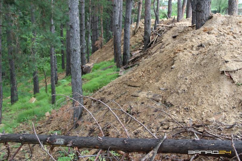 Должностная инструкция мастера на лесосеке