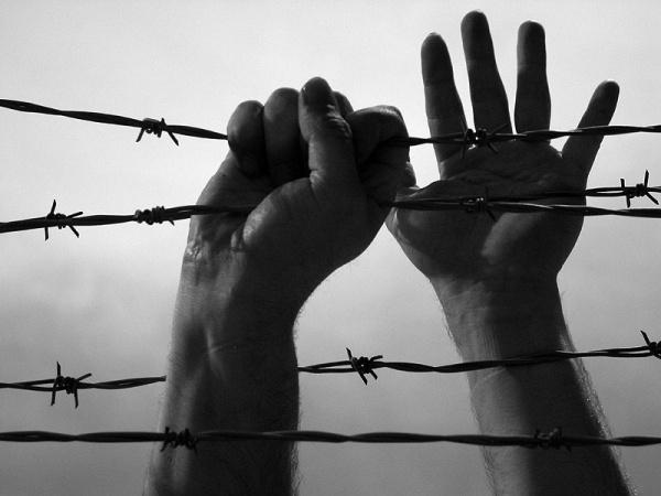 Генпрокуратура Красноярского края выявила нарушения вколонии, изкоторой убежал заключенный