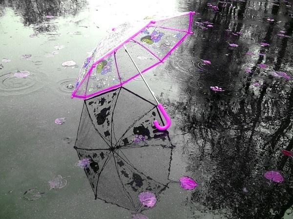 ВКрасноярске допятницы будут идти дожди