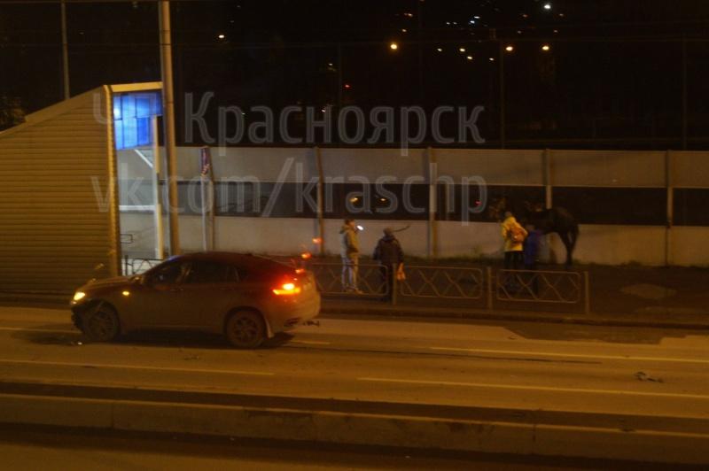 ВКрасноярске девушка зарулем БМВ сбила коня