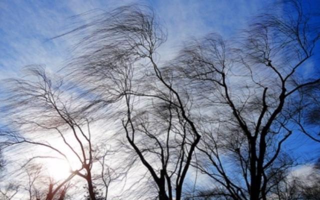 ВАлтайском крае прогнозируют похолодание напротяжении  дня, метели иусиление ветра