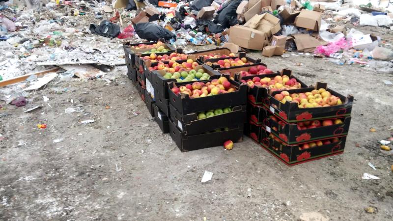 ВКрасноярске уничтожили первые вновом году санкционные яблоки