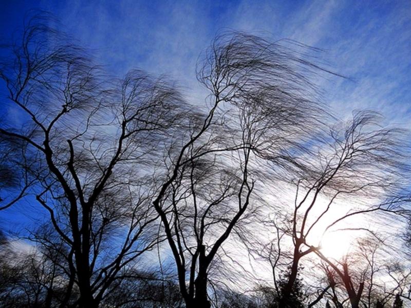 Красноярцев предупредили обочень сильном ветре