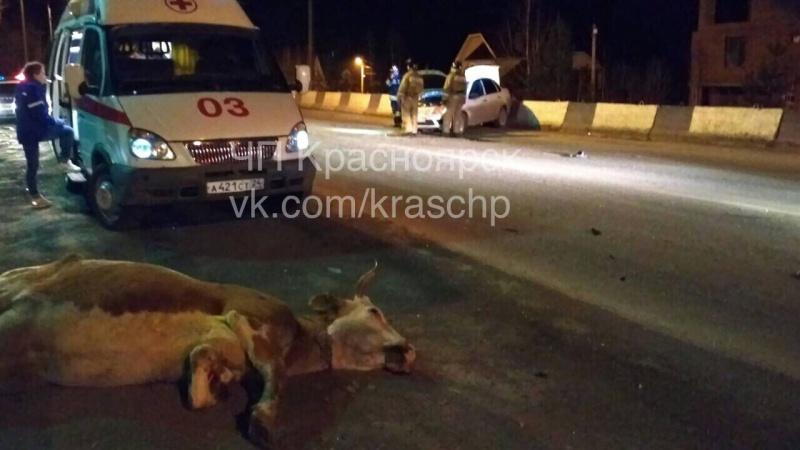 Под Дивногорском шофёр иномарки пострадал после столкновения скоровой