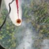 В тушении лесных пожаров впервые применили метод взрывных работ в Красноярском крае