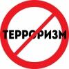 За призывы к терроризму осудили юную жительницу Минусинска